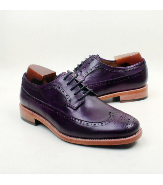 Special Order Shoe #64